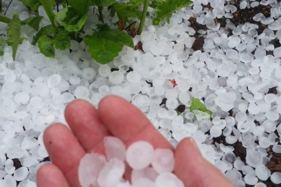 montgomery co s largest ever hail fell on monday wtop