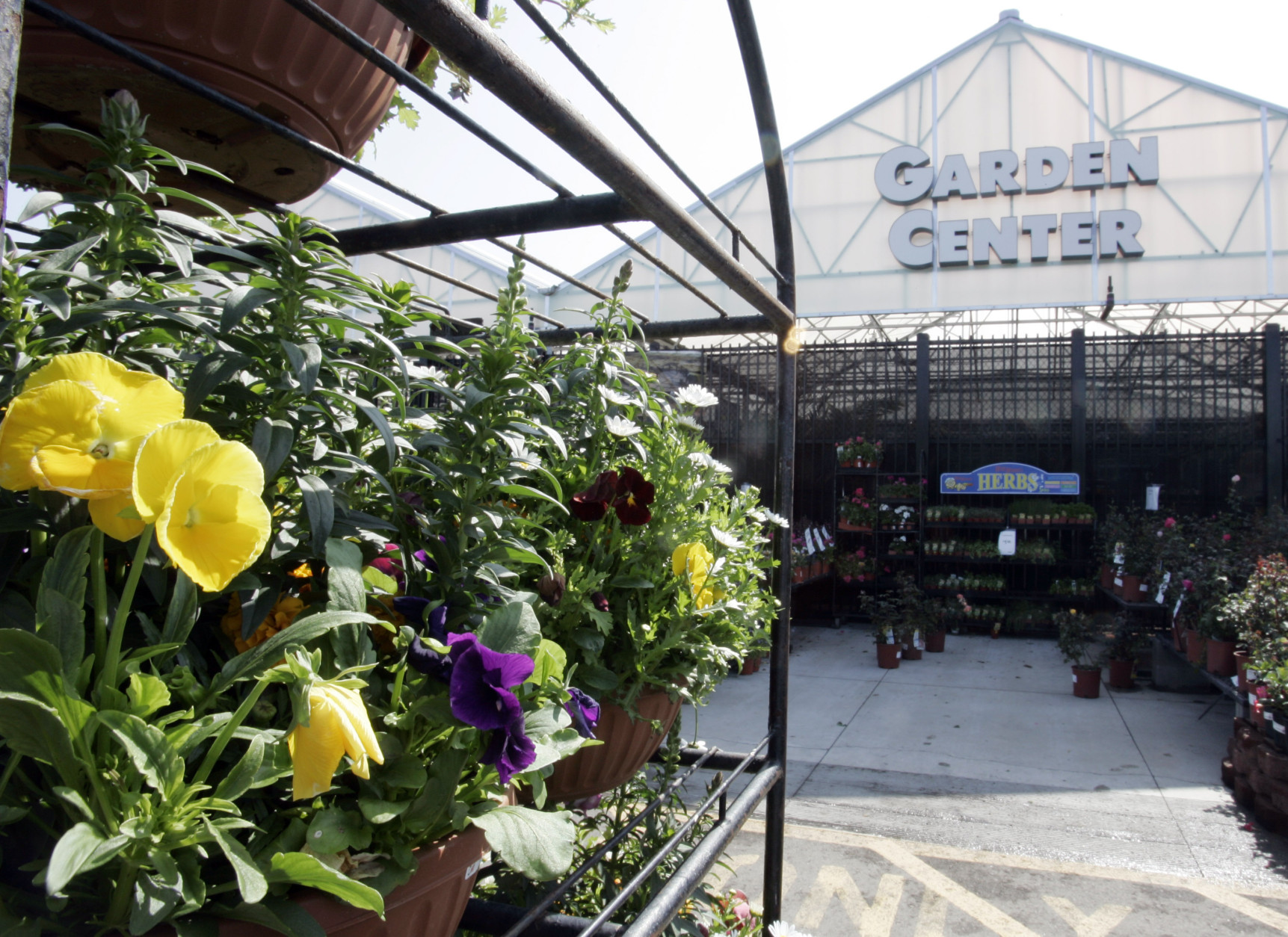 Survey Higher than average prices found at top local nurseries WTOP