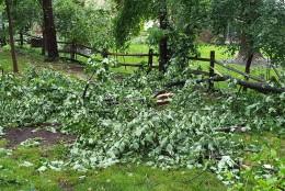 Storm damage in Columbia, Maryland on June 21, 2016. (Courtesy Alana Casanova Johnson)