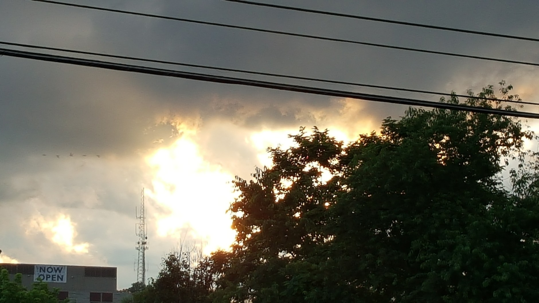 Post-storm in Middlebrook on June 21, 2016. (Courtesy Gail Estep)