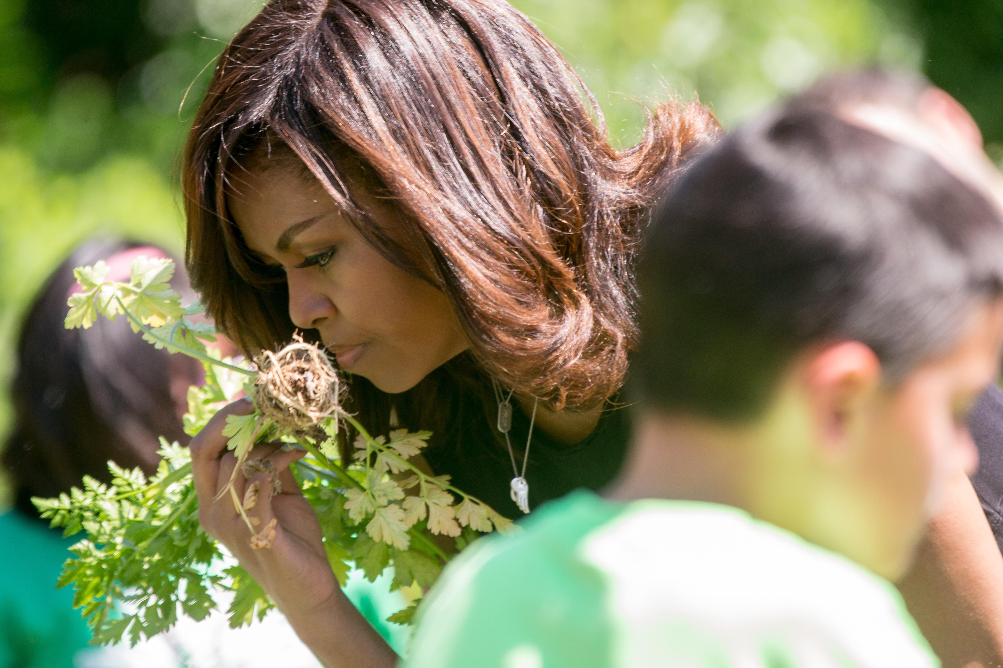 Photos: The White House Kitchen Garden harvest