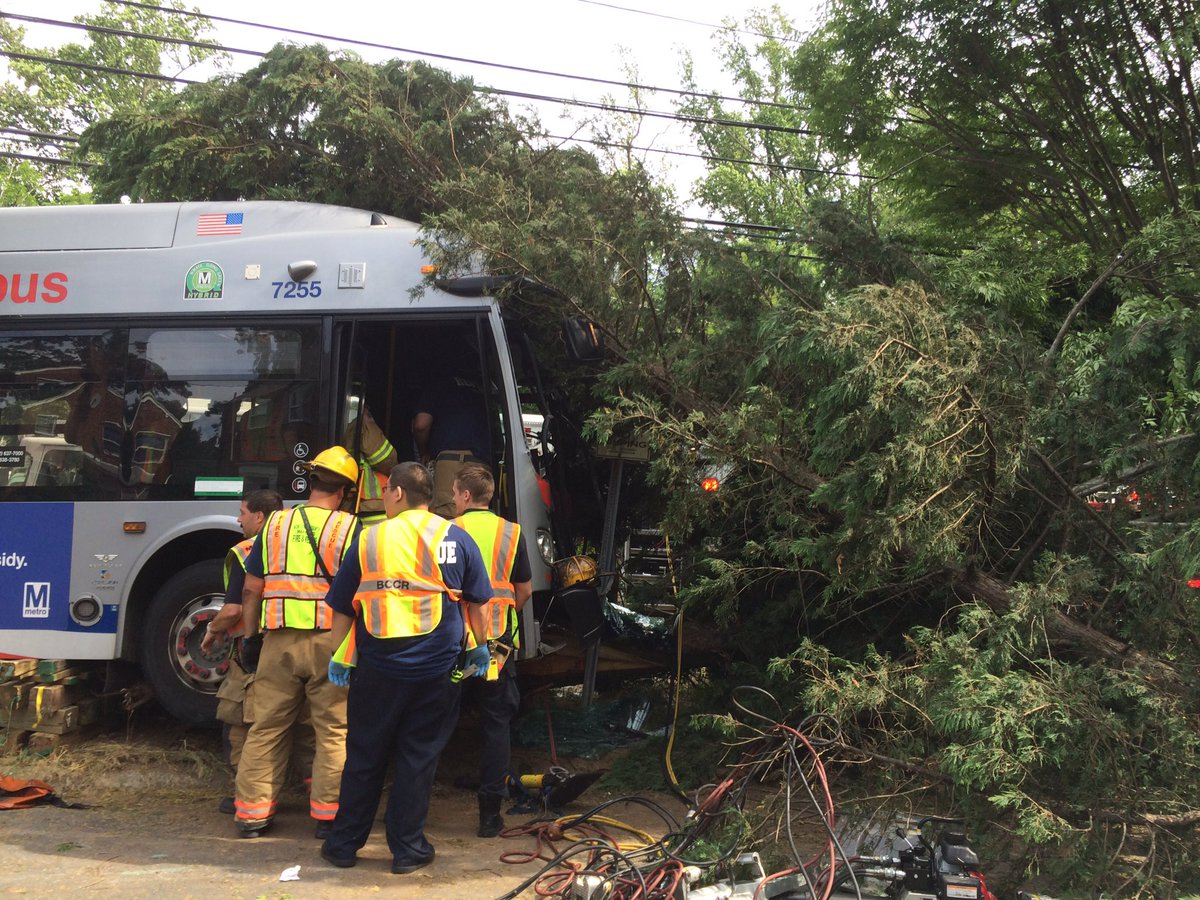 Metrobus crashes into tree in Silver Spring