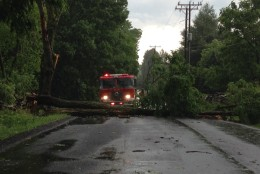 Storm damage in the area of Snickersville Turnpike on June 21, 2016. (Courtesy Jessie McQuillen)