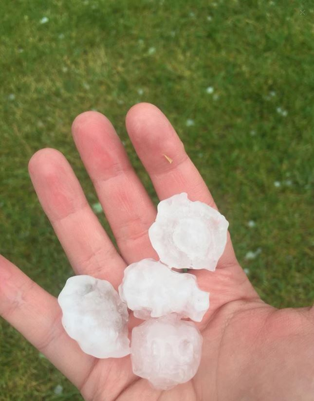 Hail in South Riding, Virginia on June 21, 2016. (Courtesy Alison Long)