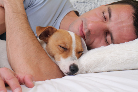 Is it healthy to sleep with your pets?