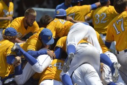 Members of UC Santa Barbara pile onto teammate Sam Cohen following his walkoff grand slam to win an NCAA college baseball tournament super regional game against Louisville, Sunday, June 12, 2016 in Louisville Ky. (AP Photo/Timothy D. Easley)