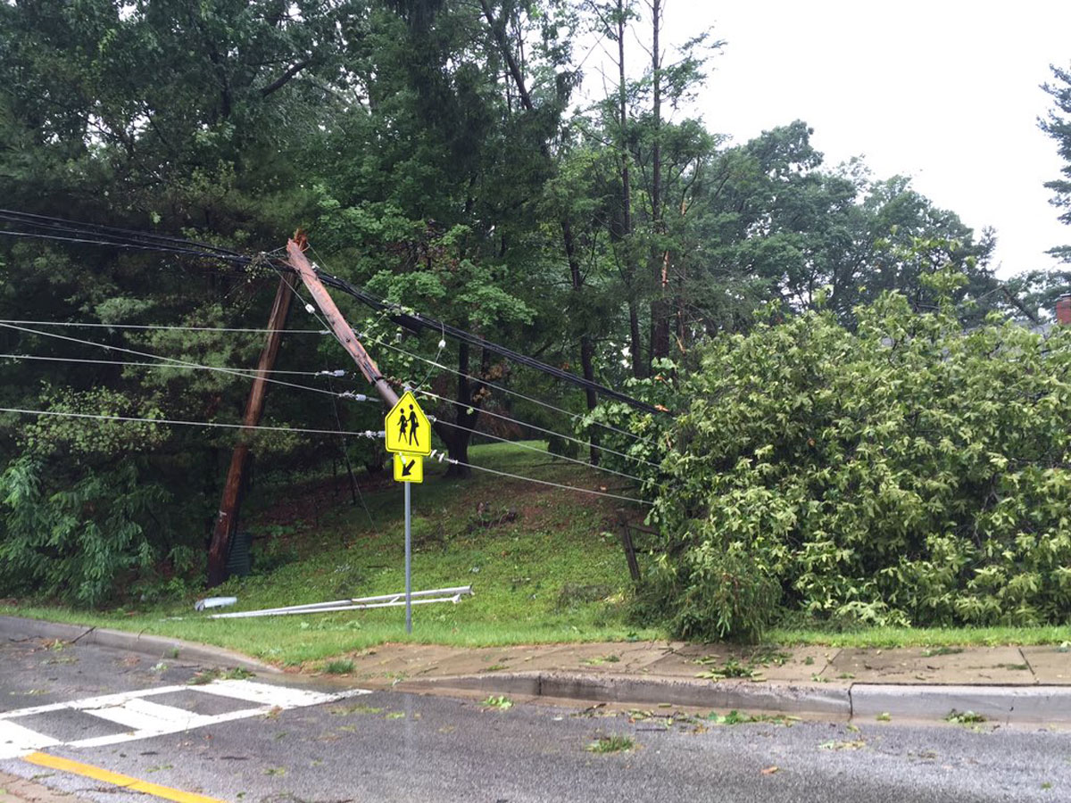 A utility pole snapped in half by a tree in Howard County. (WTOP/Michelle Basch)