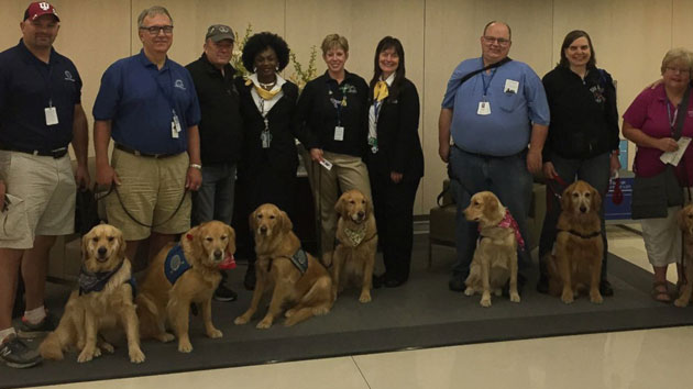 Comfort Dogs Provide Hope and Encouragement After Tragedy in Orlando