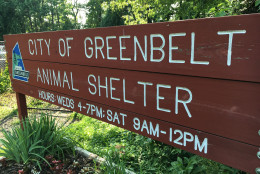 The sign for Greenbelt's animal shelter. (WTOP/Kate Ryan)