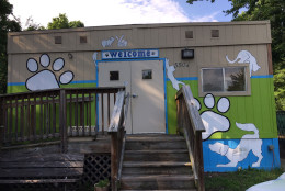 Greenbelt's animal shelter. (WTOP/Kate Ryan)