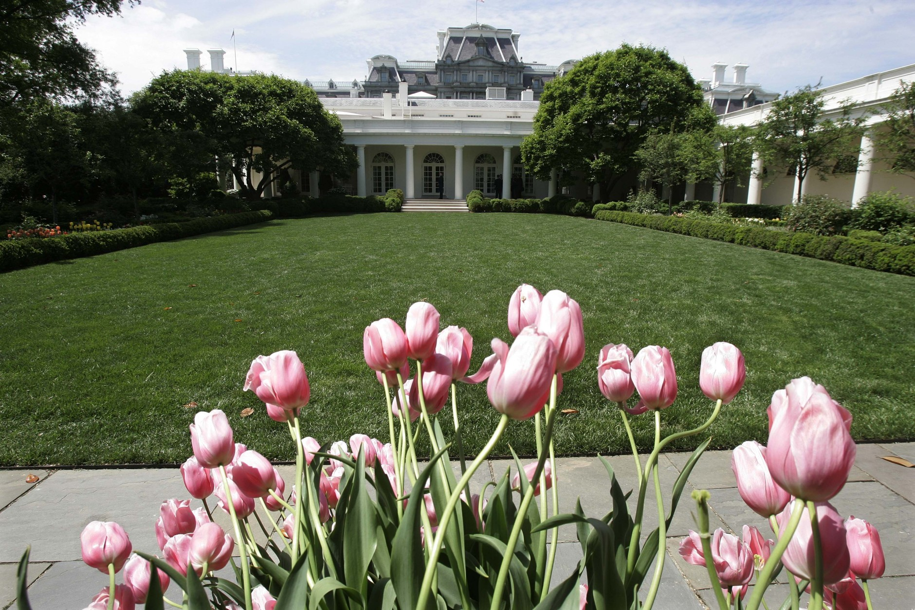 The Rose Garden with tulips in foreground at the White House, Wednesday, April 26, 2006, in Washington . (AP Photo/Ron Edmonds)