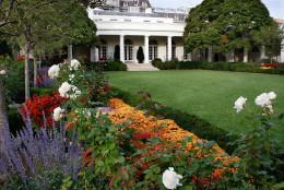 Rose Garden of the White House, Friday, Oct. 24, 2008, in Washington.     (AP Photo/Ron Edmonds)