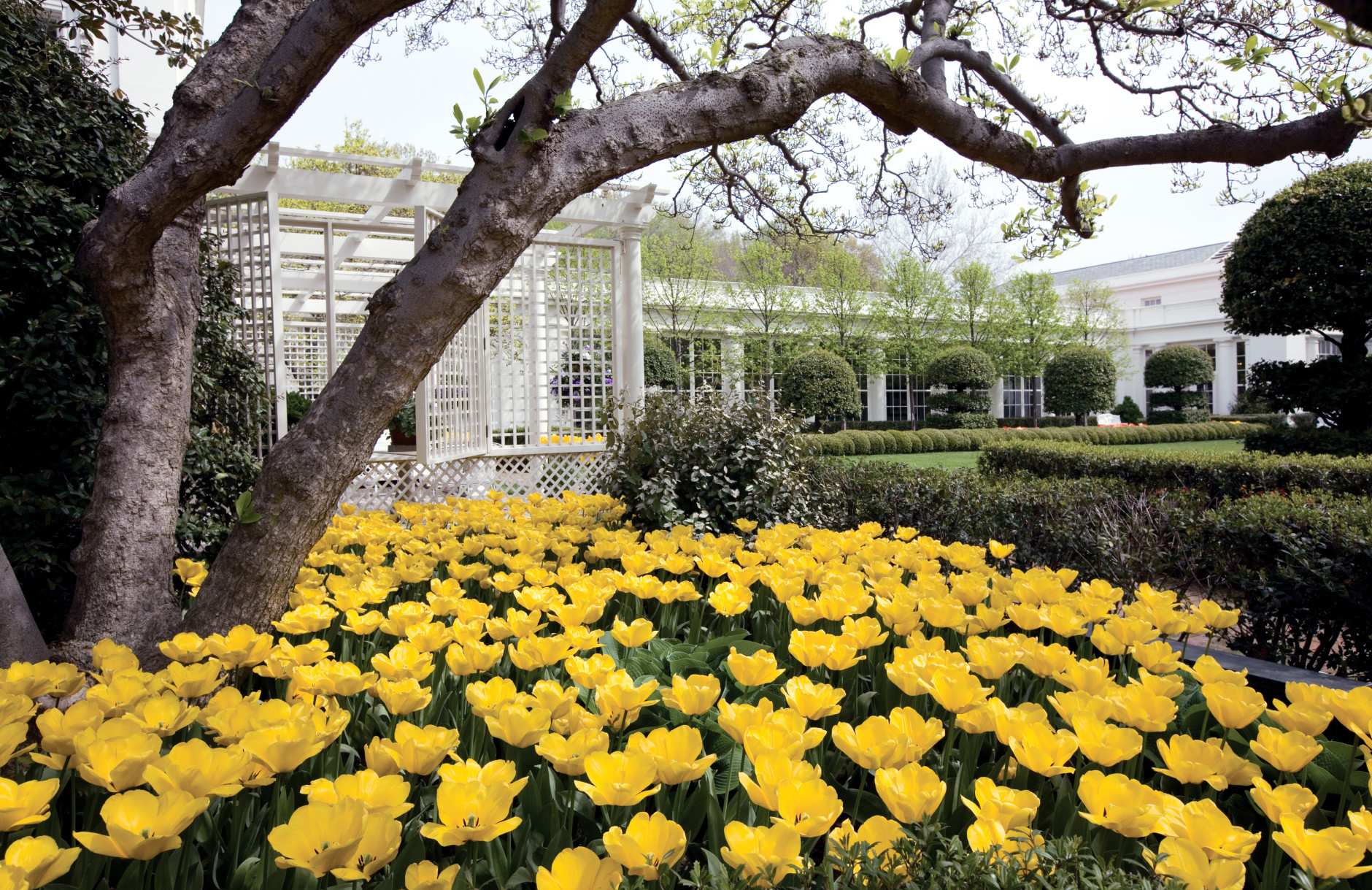 The view toward the Jacqueline Kennedy Garden is one of the stops for visitors touring the White House gardens and grounds in Washington, Sunday, April 19, 2009. (AP Photo/J. Scott Applewhite)