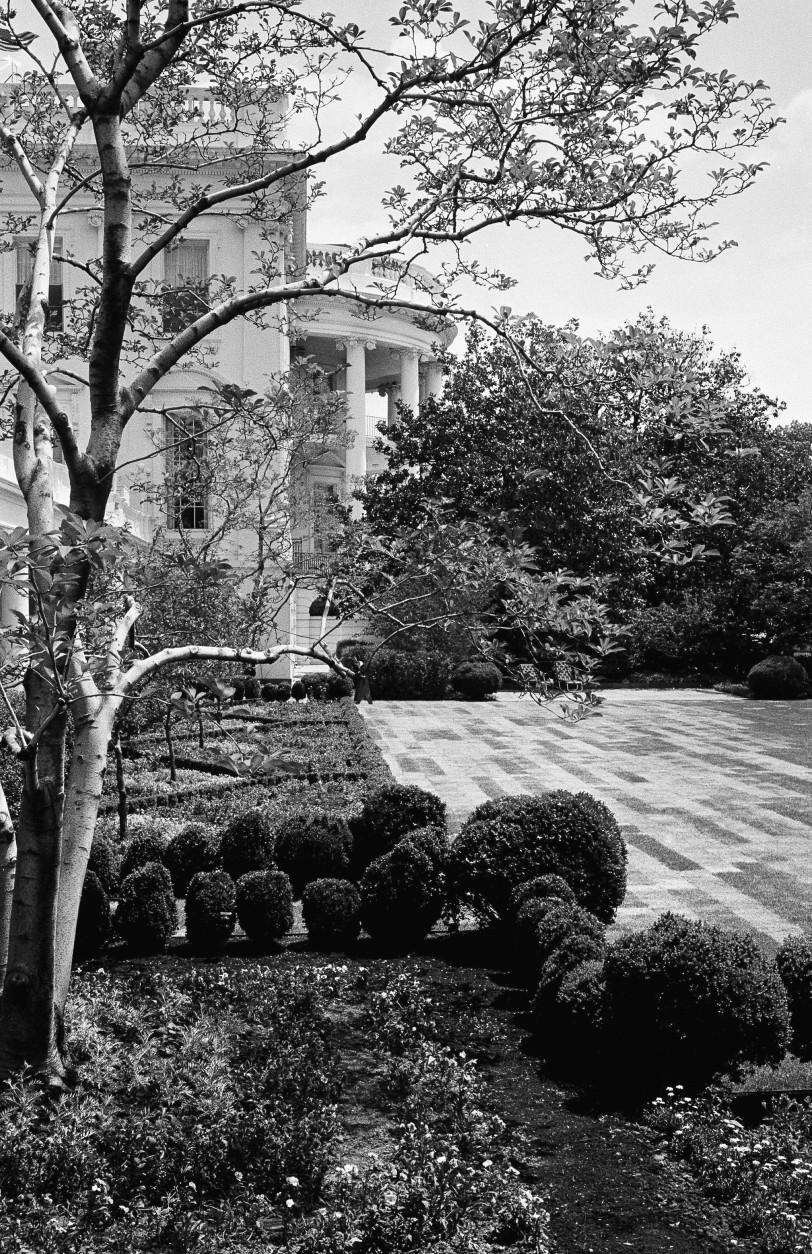 """Last step in the """"new look"""" landscaping of the Rose Garden in the south grounds of the White House gives this checkerboard pattern to the newly sodded lawn in Washington  May 21, 1962. Here thousands of presidential visitors listen as the chief executive greets them when they call in numbers too great to be accommodated inside. View is from steps outside the President's office. (AP Photo)"""