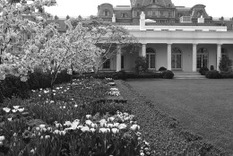 Looking across the Garden on the south side looking west to the Presidents office wing is the spot where most of the roses are left in Washington on April 19, 1963. (AP Photo/JR)