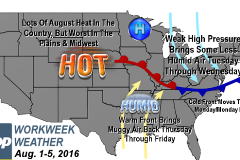 Workweek weather: August kicks off similar to last week, but with some twists