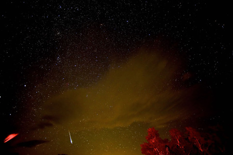 The Perseids meteor shower: When it starts, what to expect and how to watch