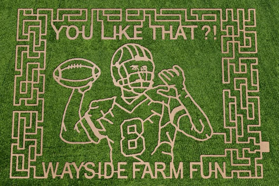 A rendering of the Kirk Cousins-themed corn maze set to open in September at the Wayside Fun Farm. (Courtesy Wayside Fun Farm).