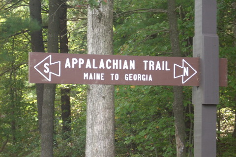 Judge orders psych evaluation for Appalachian Trail suspect