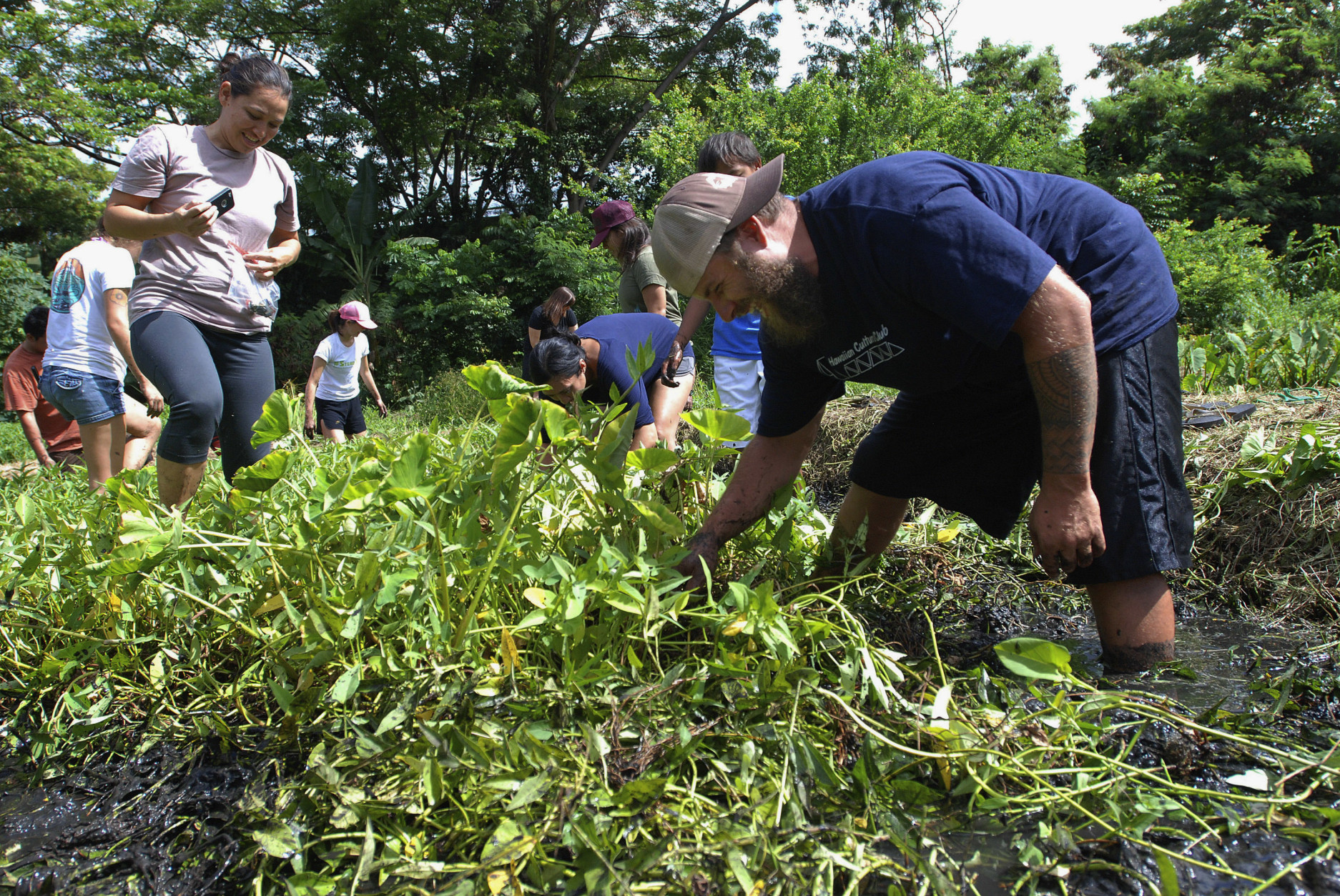 In this photo taken July 9, 2016, Anthony DeLuze, right, and Sierra Club volunteers clear a patch for taro planting at his farm in Aiea, Hawaii. Some residents including DeLuze and local water utility officials want the Navy to move 20 World War II-era tanks that sit on top of one Honolulu's most important aquifers, but the Navy views the tanks as a vital strategic asset that would be difficult to replicate elsewhere. (AP Photo/Audrey McAvoy)