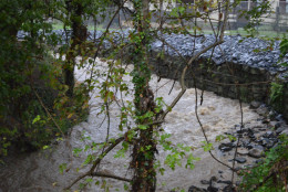 The Tiber River in Ellicott City. (Courtesy Howard County Office of Emergency Management/Facebook)