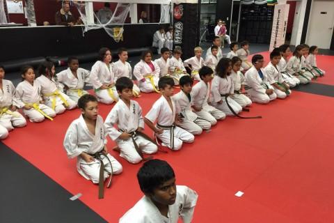 More than martial arts: Local karate schools teach values after school