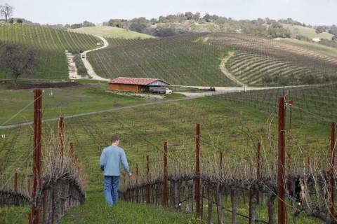 Wine of the Week: International Grenache Day