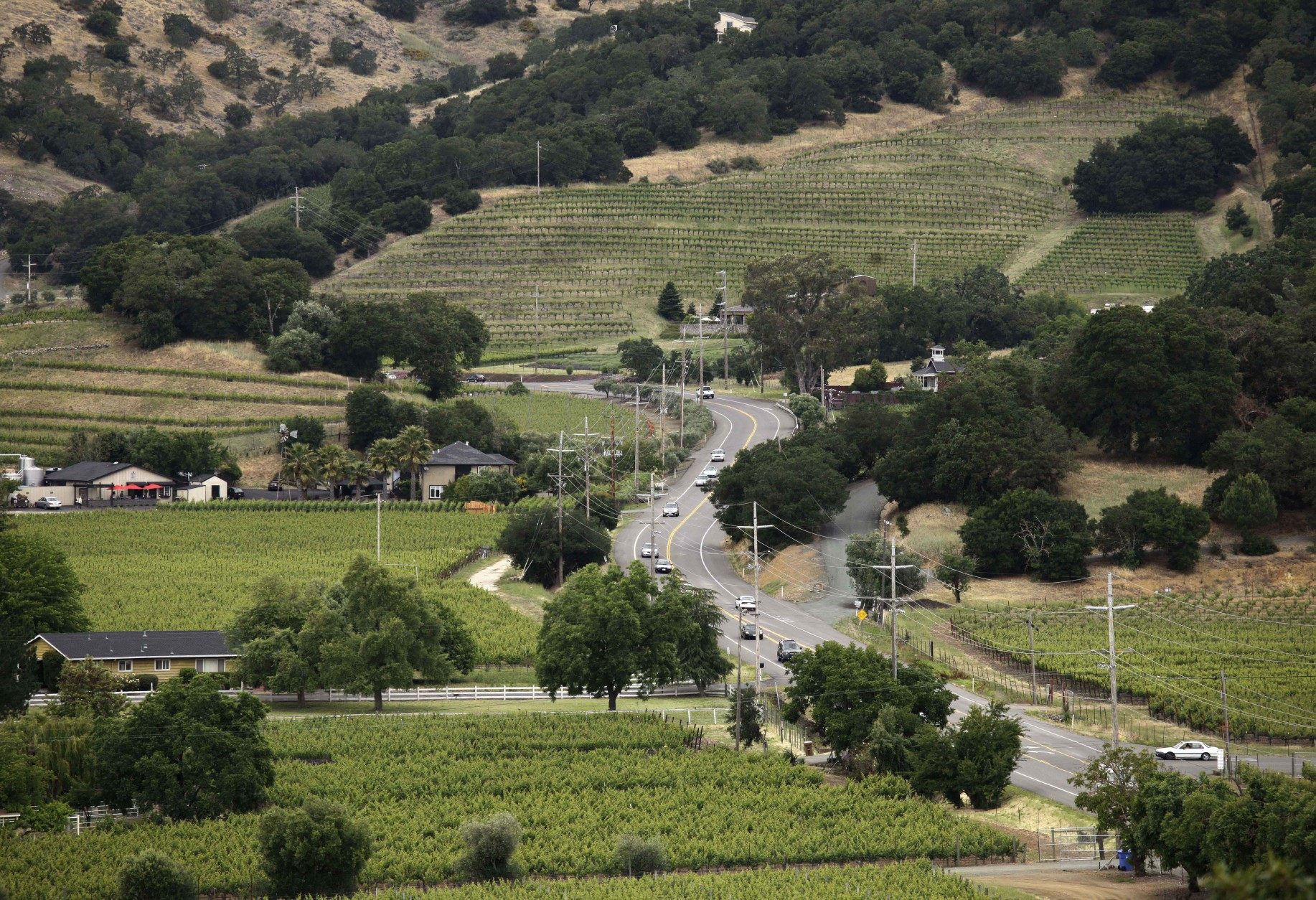 FILE - In this June 2, 2011 file photo, the Silverado Trail winds through the Stags Leap District in this view from Silverado Vineyards in Napa, Calif.The trail more or less runs parallel to Highway 29 but is quieter, winding through green vistas of vineyards and rolling hills. Wineries along this route include Mumm Napa Valley. (AP Photo/Eric Risberg, File)