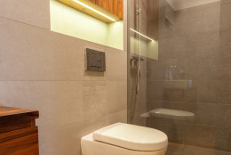 Small toilet with shower in modern bathroom