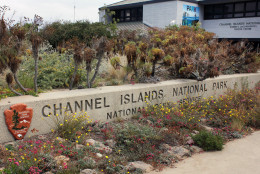 This May 30, 2016 photo shows the Channel Islands National Park visitors center in Ventura, Calif. (AP Photo/John Antczak)