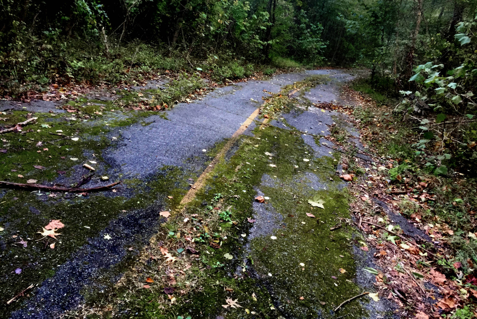 Sharperville Road – Accokeek, Md.  Sharperville Road was a busy cut-through and was known for being dangerous. Highway engineers attributed the abnormally high number of crashes to substandard road geometry near the bridge. Others believed the road was cursed. It was closed about 10 years ago. (WTOP/Dave Dildine)