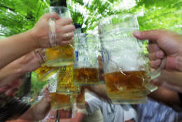 MUNICH, GERMANY - MAY 28:  Visitors of the Augustiner beergarden cheer during a warm summer afternoon on May 28, 2008 in Munich, Germany. Visiting beergardens is very popular in Munich during the warm weather period. (Photo by Johannes Simon/Getty Images)
