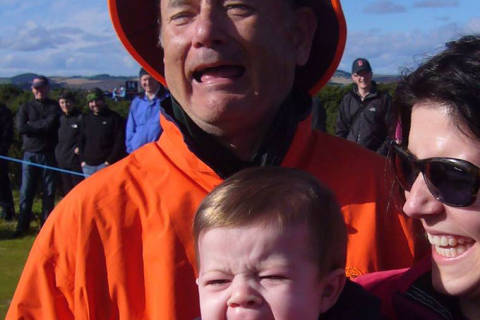 Is it Bill Murray or Tom Hanks? It's a tougher question than you might think
