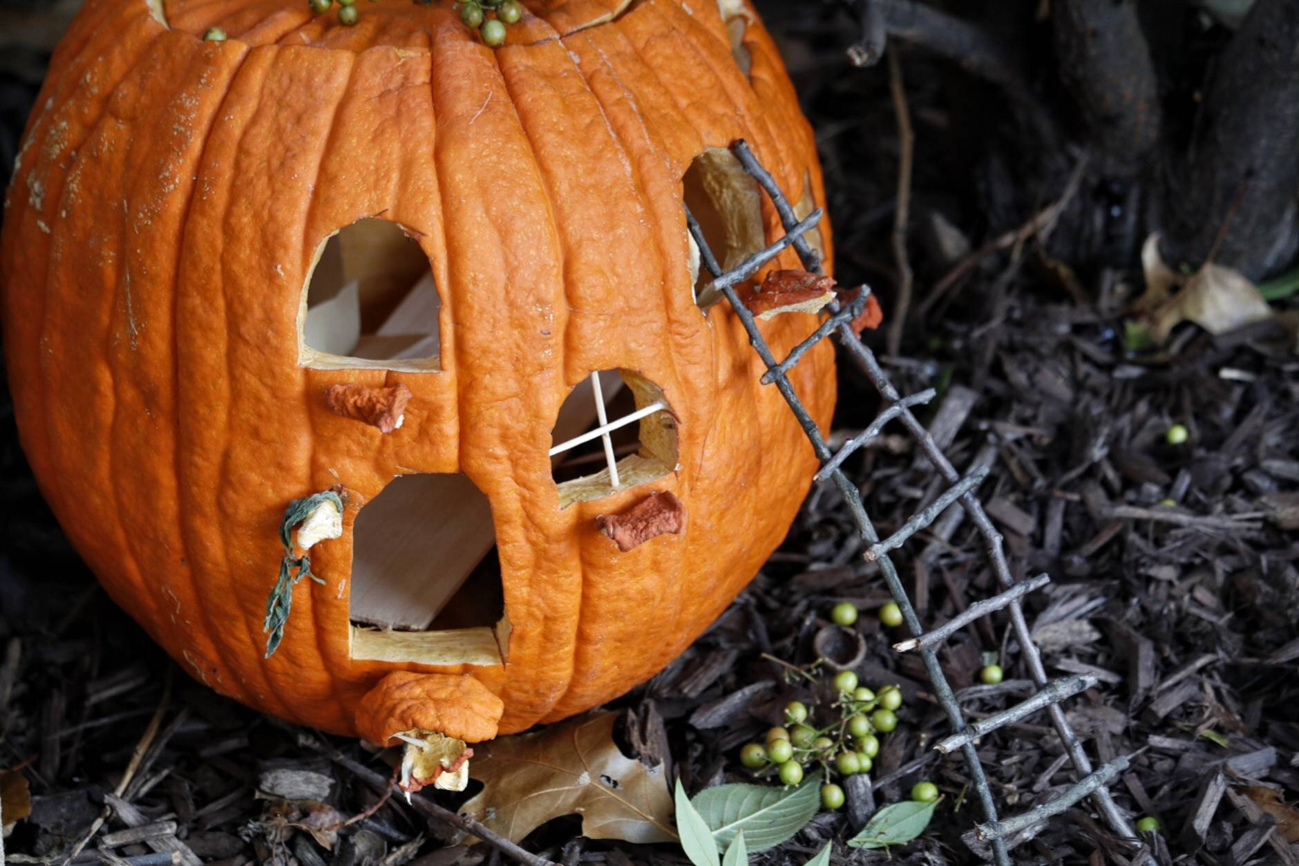 Six-year-old Eloie was inspired by a book on fairy gardens and started making a little house for them out of pumpkins. (WTOP/Kate Ryan)