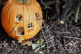 This pumpkin is the work of Scott Homolka and his 6-year-old daughter, Eloie. (WTOP/Kate Ryan)