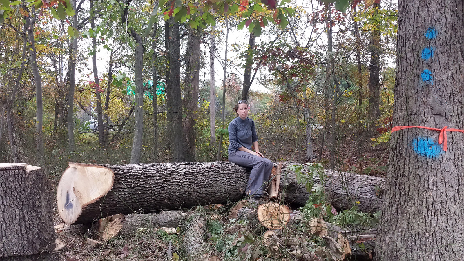 Carolyn Muscar is among Berwyn Heights residents who believe Pepco should do more to protect old growth trees. She suggests a more frequent maintenance schedule could prevent trees from growing into zones deemed problematic to power lines. (Courtesy Therese Forbes)