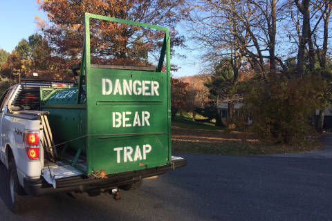 Md. woman's 911 call after bear attack: 'I'm gonna die'