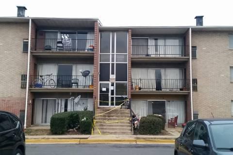 Alexandria apartment fire displaces 67