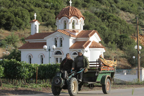 Wine of the Week: Going Greek for the holidays