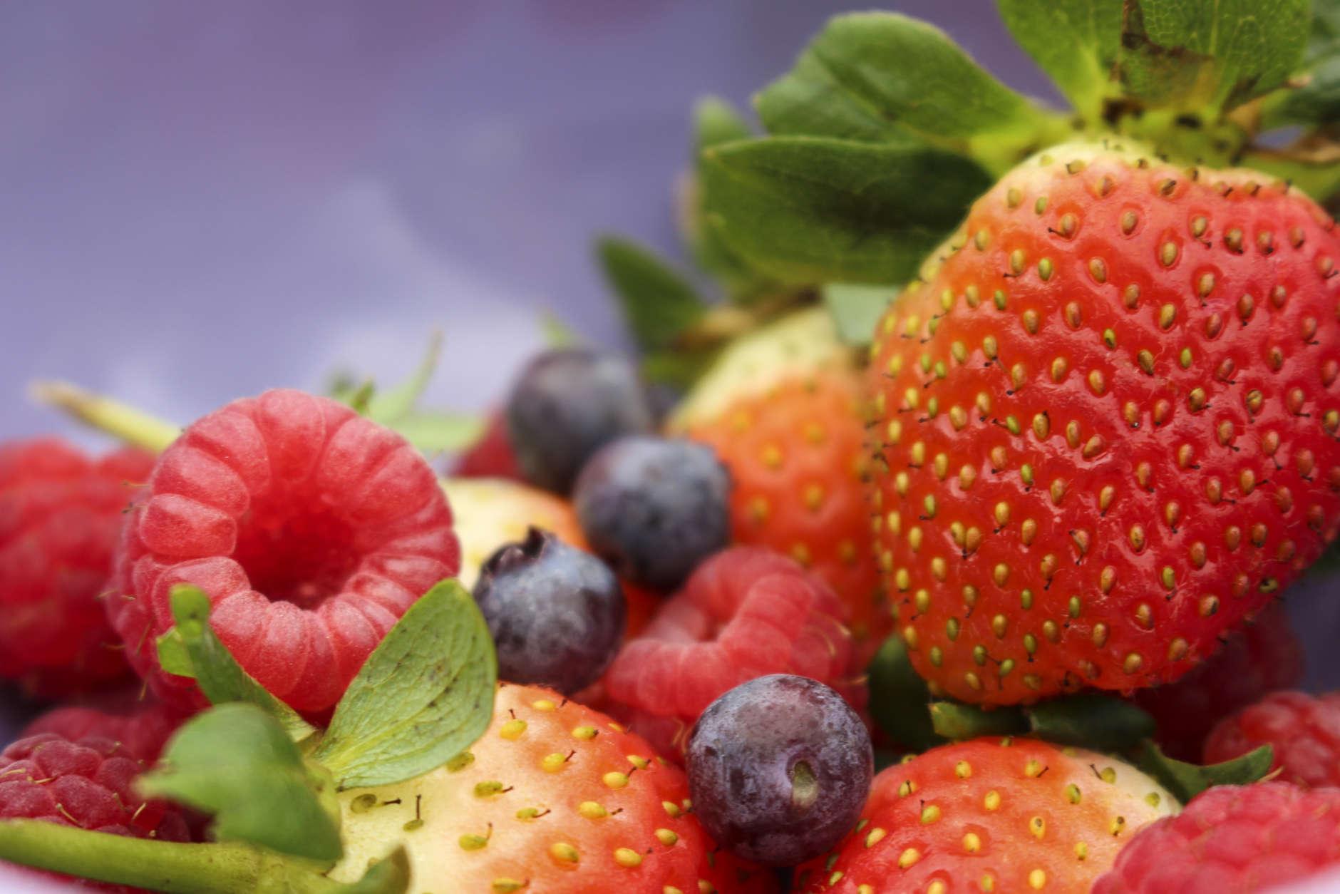 Macro Image of Multiple Berries