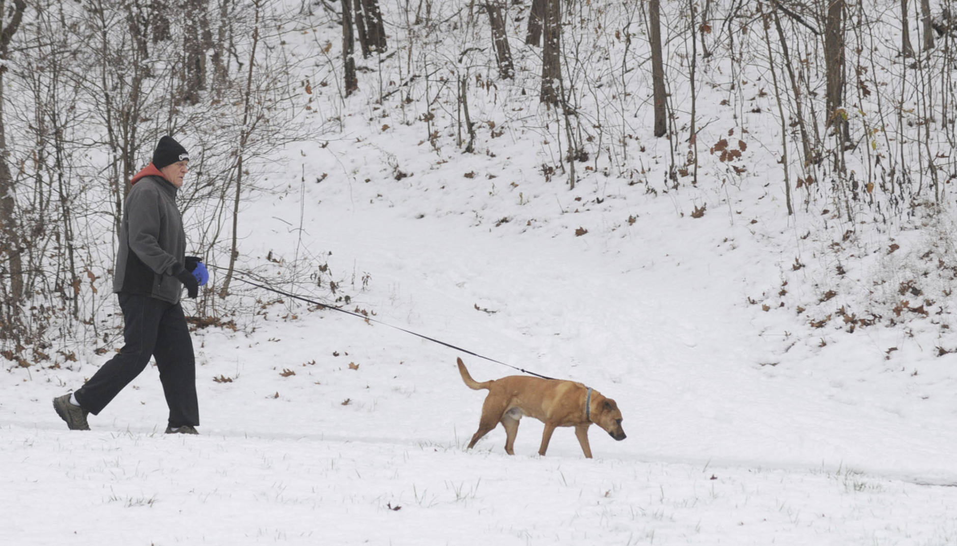 Sam Petty walks  Blue on a trail at Hawthorn Park near Terre Haute Ind., Tuesday, Dec. 13, 2016. The two take walks year round with two miles being the usual distance. (Jim Avelis/The Tribune-Star via AP)