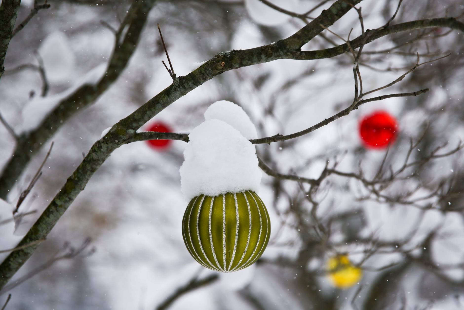 Christmas ornaments hang on a tree in Kalamazoo, Mich., on Sunday, Dec. 11, 2016. Snow from snow showers earlier in the week and Winter Storm Caly have blanketed Kalamazoo with inches of snow. (Chelsea Purgahn//Kalamazoo Gazette-MLive Media Group via AP)