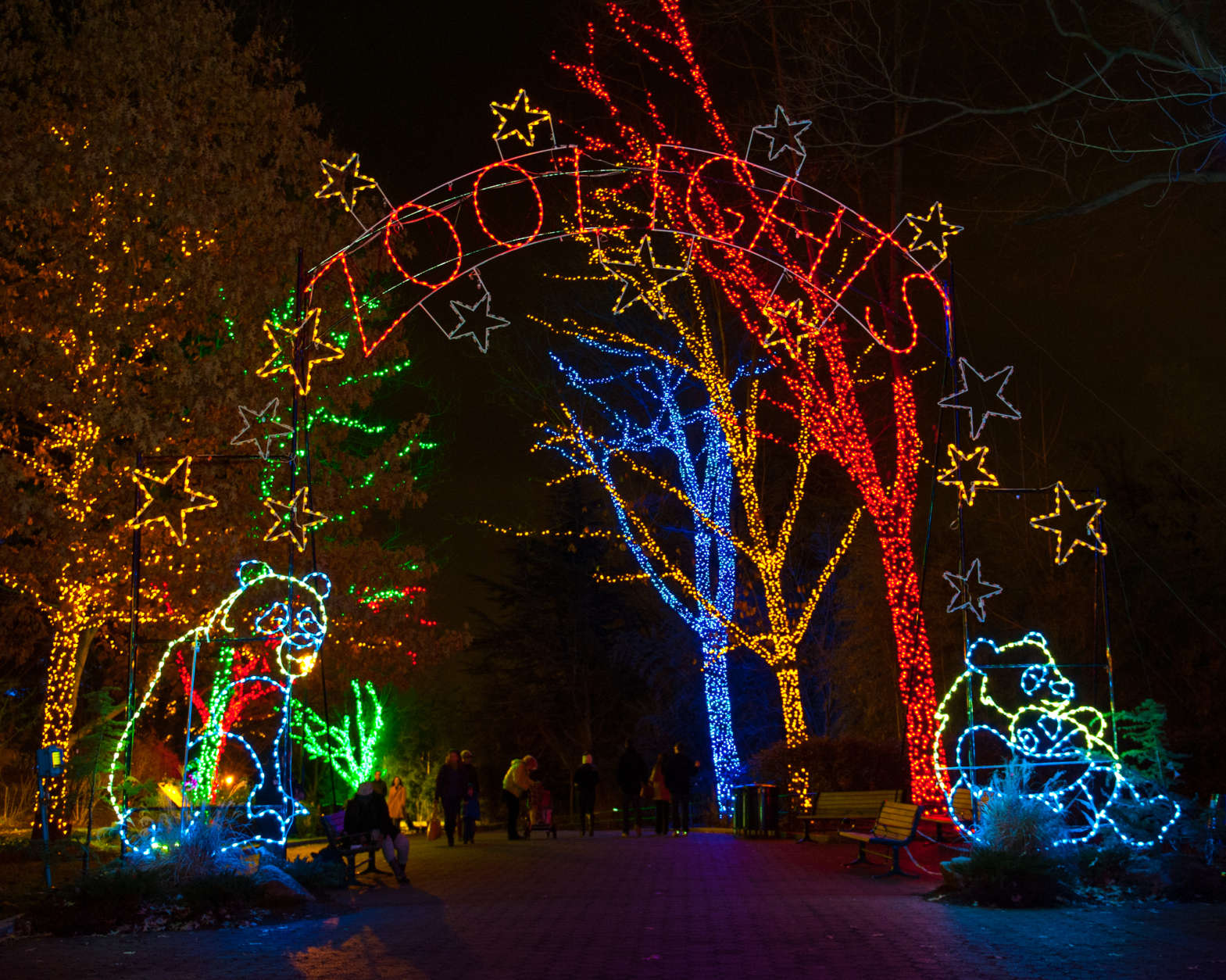 """<p><strong>ZooLights</strong></p> <p>Beginning Nov. 29 and running through Jan. 1, the Smithsonian National Zoo tradition features more than a half-million eco-friendly lights. This year&#8217;s event includes a gingerbread village, a holiday market and rides on the Zoo Choo-Choo. Admission is free, and the show runs from 5 to 9 p.m. More information is available on the zoo&#8217;s <a href=""""https://nationalzoo.si.edu/events/zoolights"""" target=""""_blank"""" rel=""""noopener"""">website</a>.</p>"""
