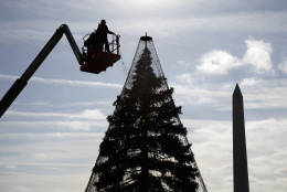 With the Washington Monument at right, Hargrove technicians install lights on the National Christmas Tree, a large evergreen tree in the northeast quadrant of The Ellipse near the White House in this 2015 file photo.  (AP File Photo/Carolyn Kaster)