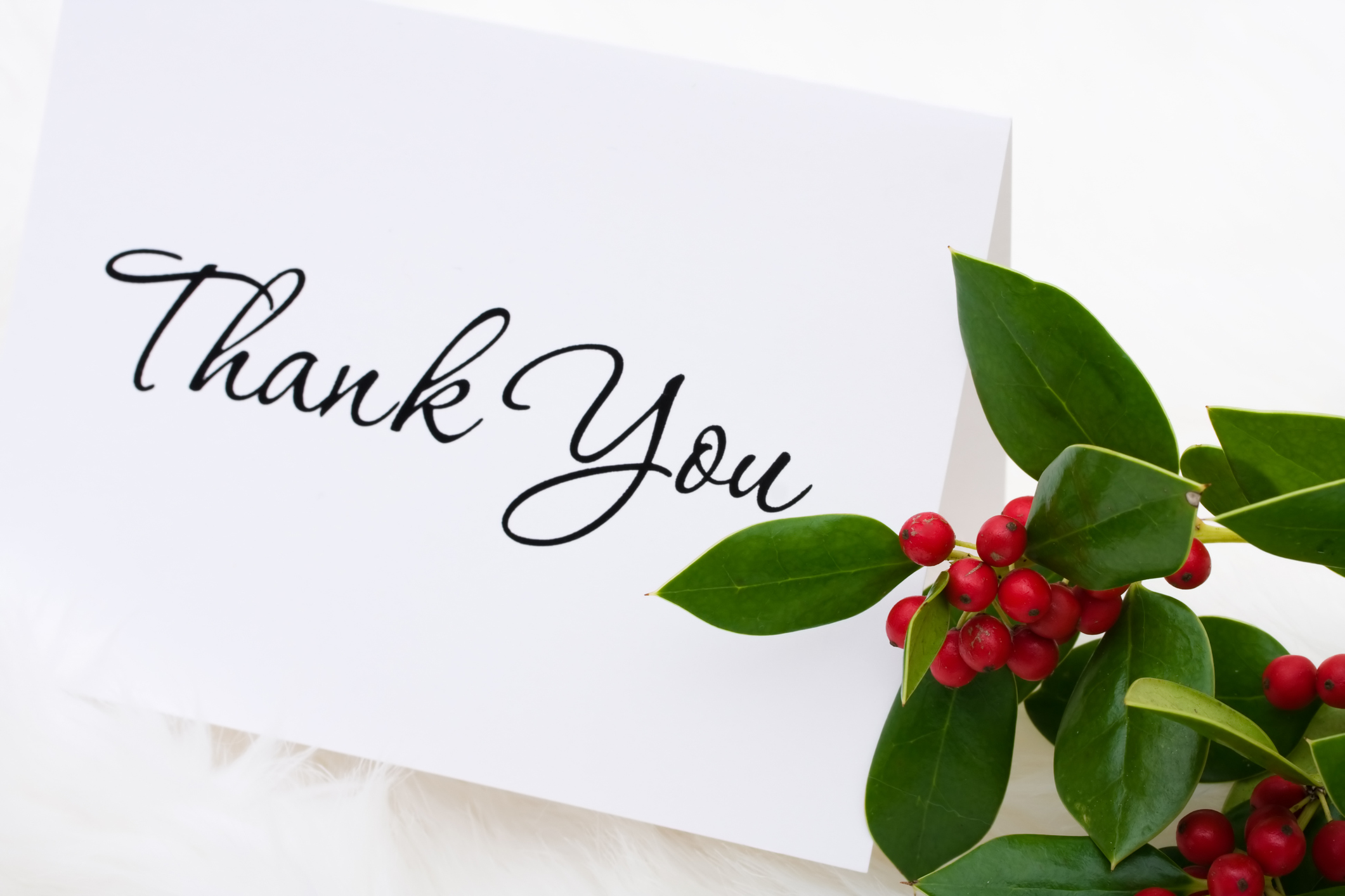 Image result for winter holiday images of thank you