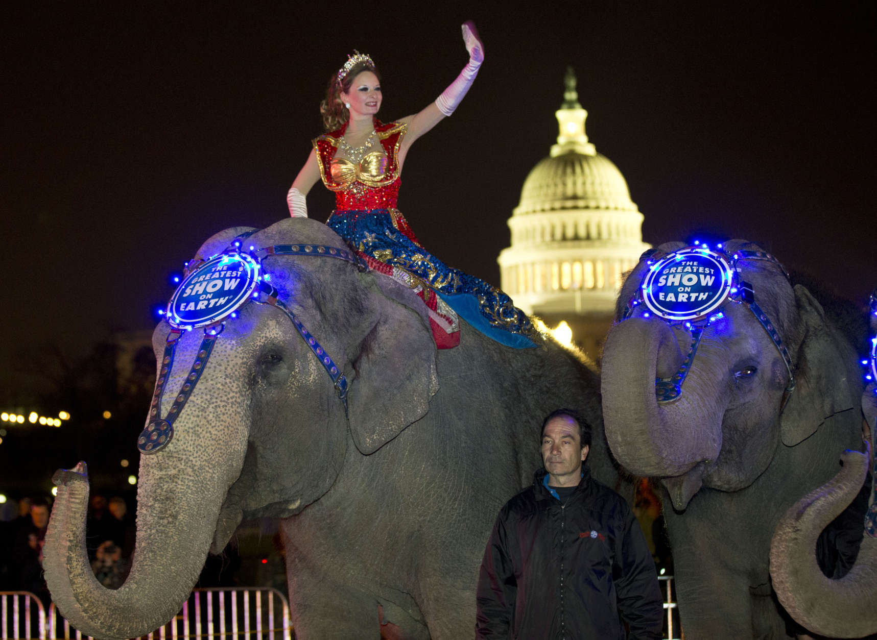 A performer waves as elephants with the Ringling Bros. and Barnum & Bailey show, pause for a photo opportunity on 3rd Street in front of the U.S. Capitol on their way to the Verizon Center, to promote the show coming to town, Tuesday, March 19, 2013, in Washington. (AP Photo/Alex Brandon)