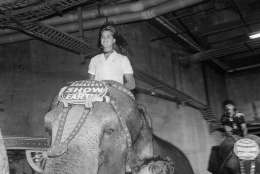 Actress and model Brooke Shield sits tall atop an elephant as she participates in the Galaxy of Stars Gala for the benefit of Vista Del Mare Child Care Services, during the opening of the Ringling Brothers and Barnum and Bailey Circus on July 21,1982 in Los Angeles. (AP Photo/ Nick Ut)