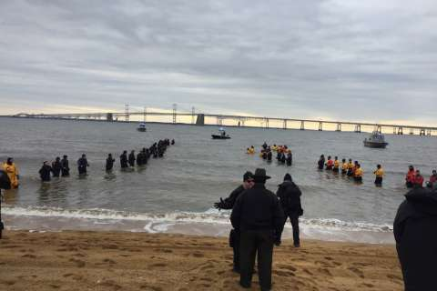 Md. dives into cold with annual polar bear plunge