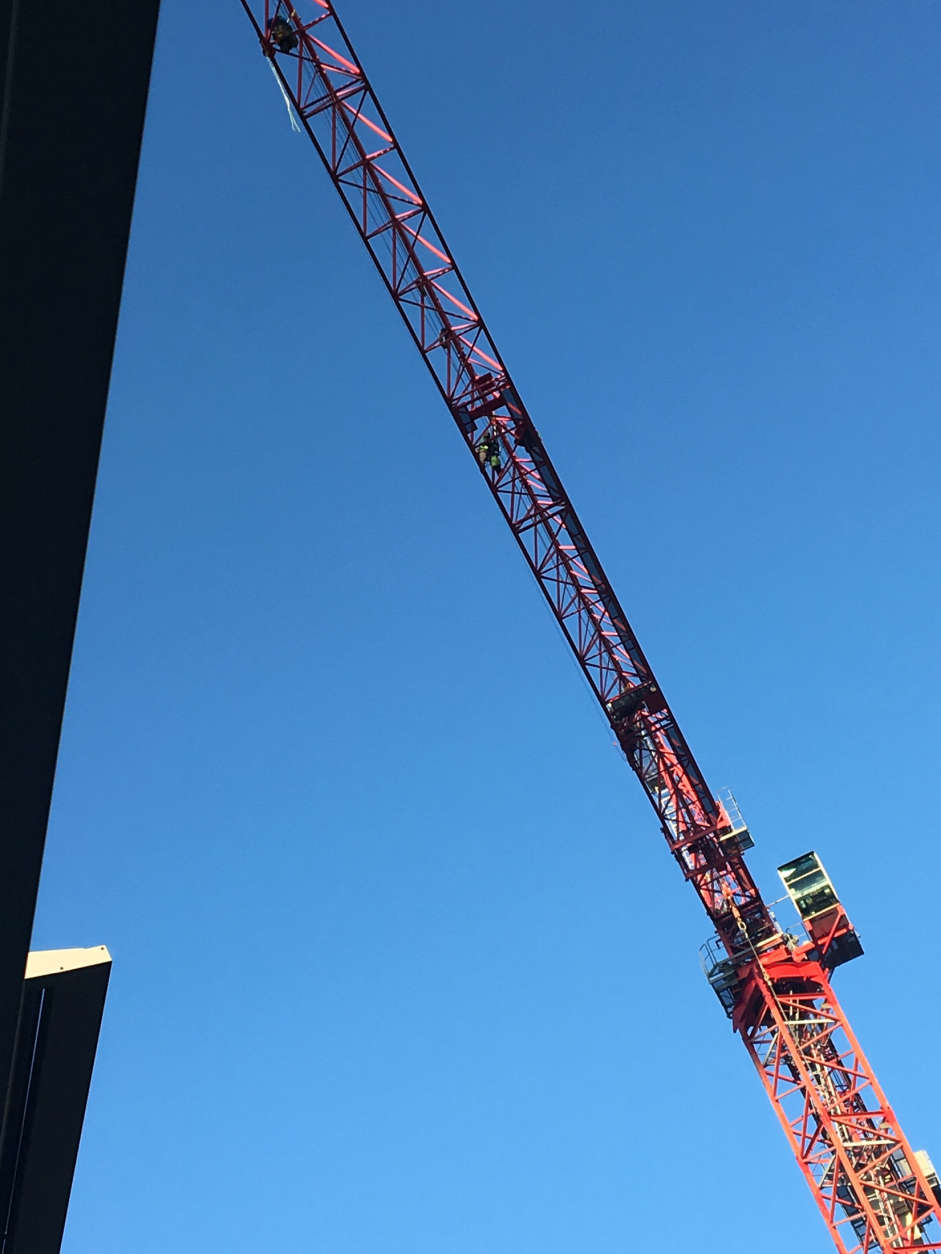 Protesters climbed a crane in downtown D.C. (Courtesy Bill Shore)