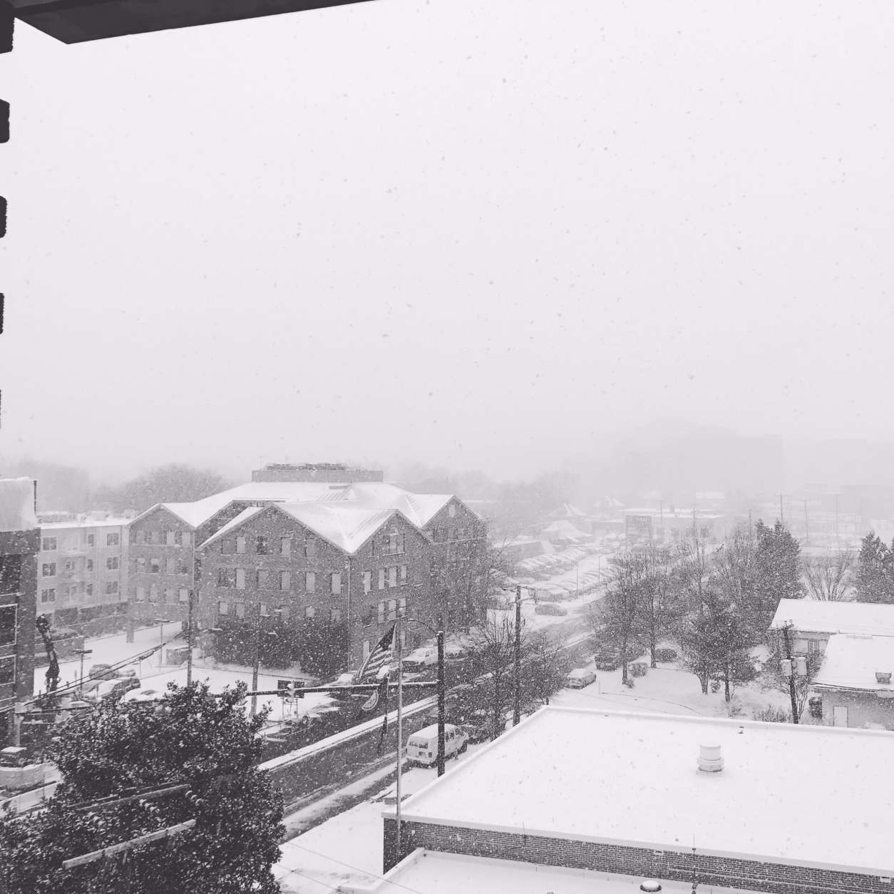 Snowfall captured in Clarendon. (Courtesy Kelly Lyles on Twitter)